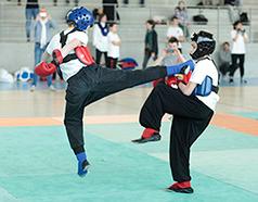 Kung Fu FAEMC